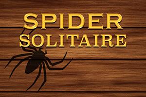 pasjans pająk wyzwanie